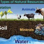 jenis-dan-contoh-sumber-daya-alam